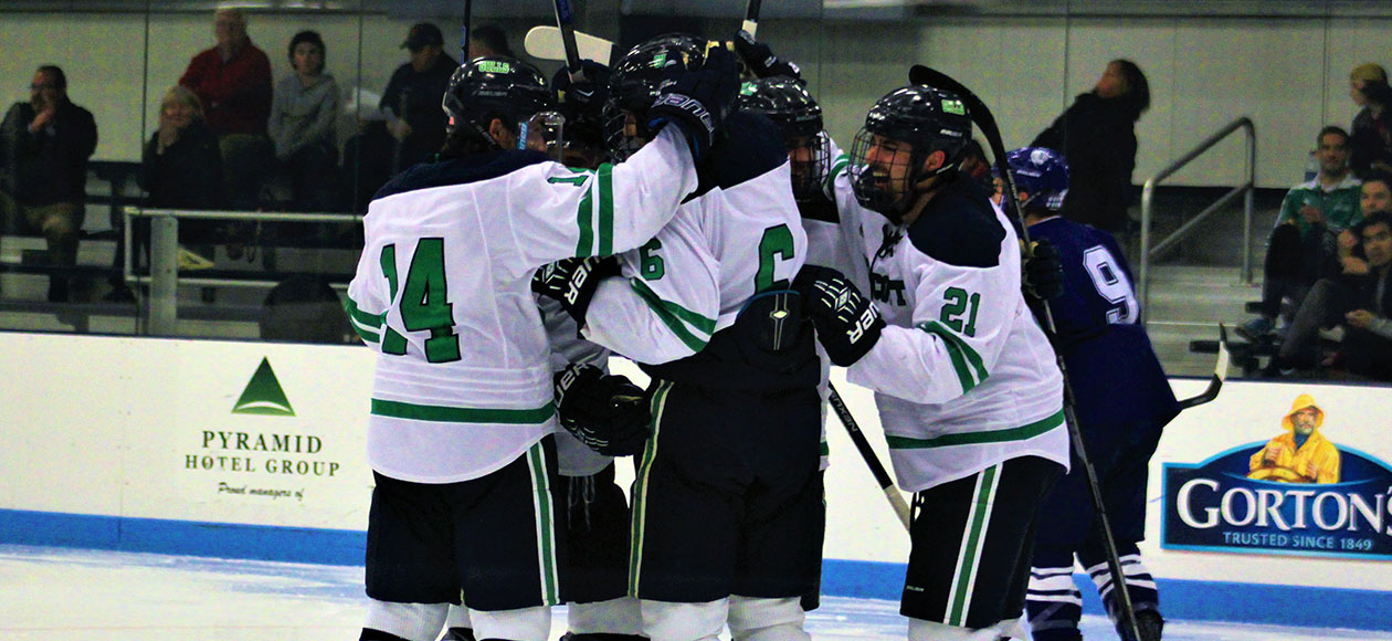 Men's ice hockey celebrates a goal.