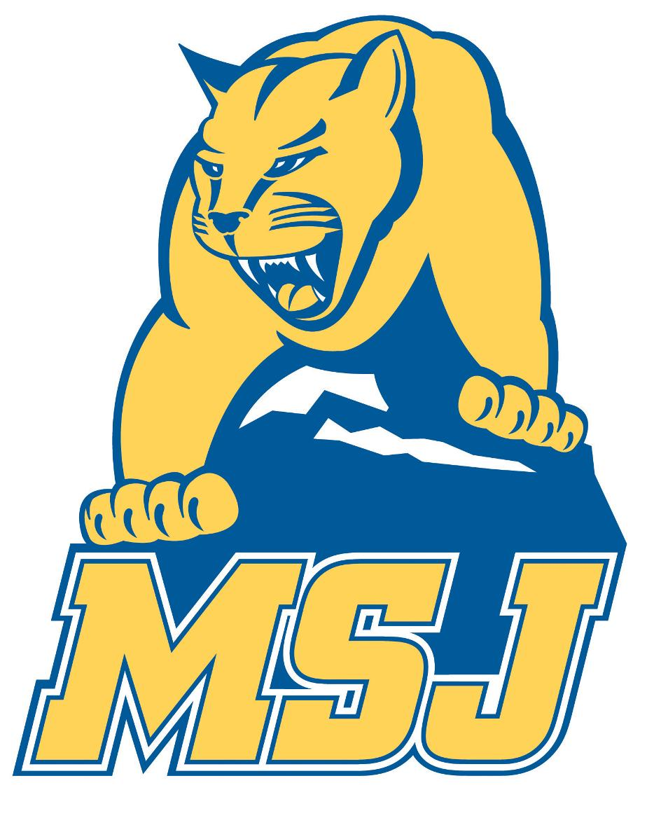 Lion with MSJ logo