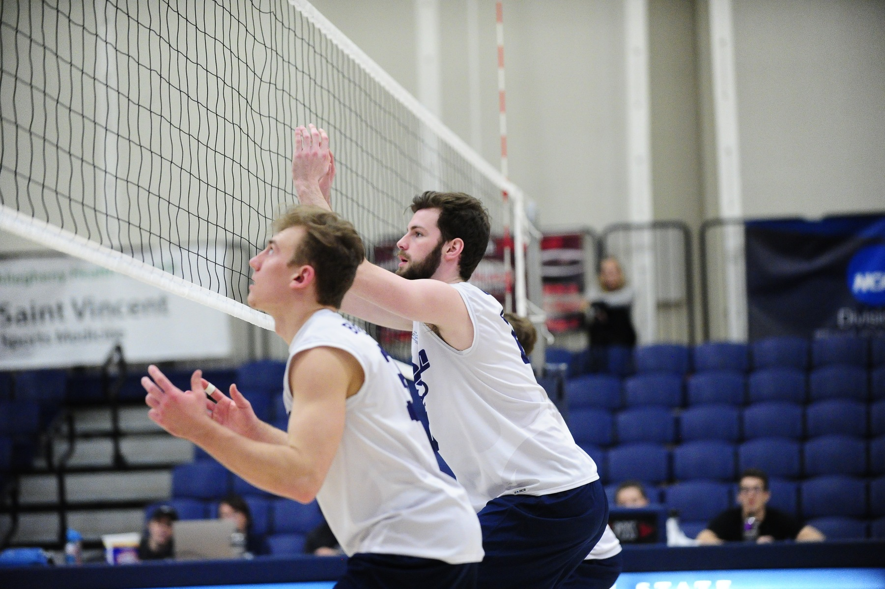 Lions Sweep D'Youville