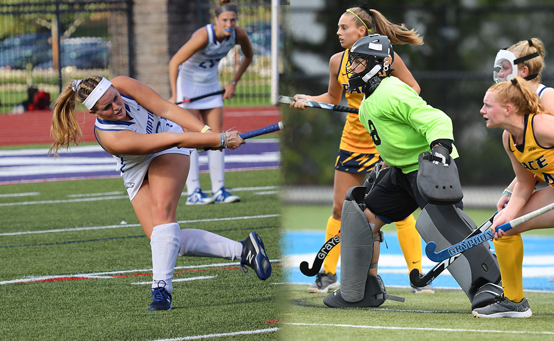 Two Hounds Earn NE10 Honors