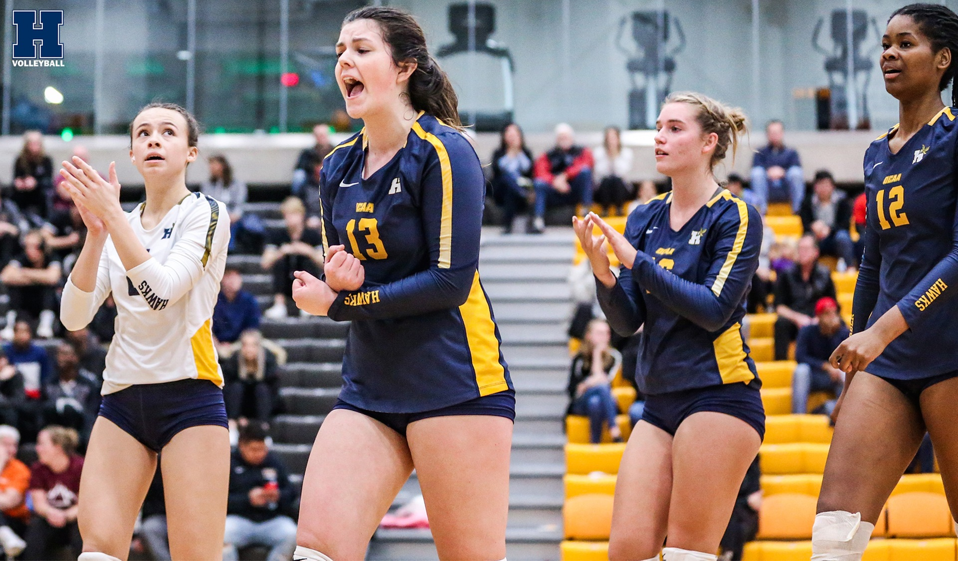 Women's Volleyball Comeback Falls Short at Mohawk