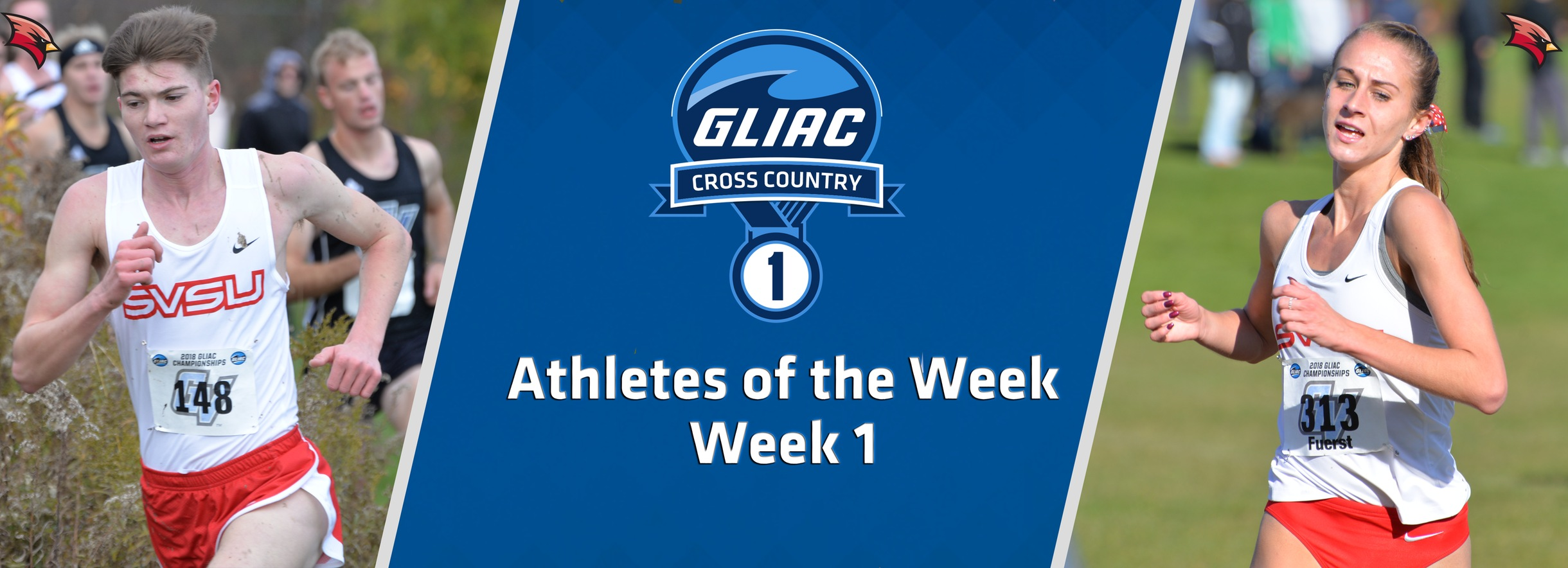 Saginaw Valley's Stimpfel and Fuerst Sweep GLIAC Cross Country Athlete of the Week Accolades