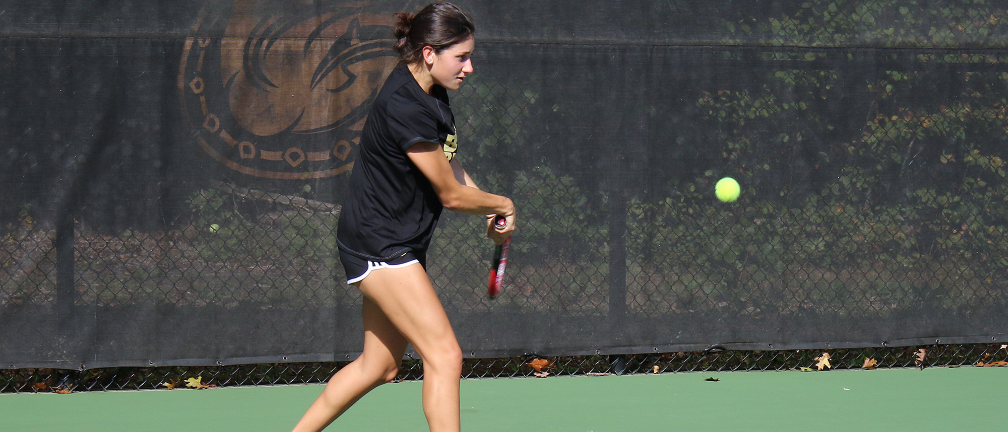 Bulldogs beat Sacred Heart, 6-1, Sunday