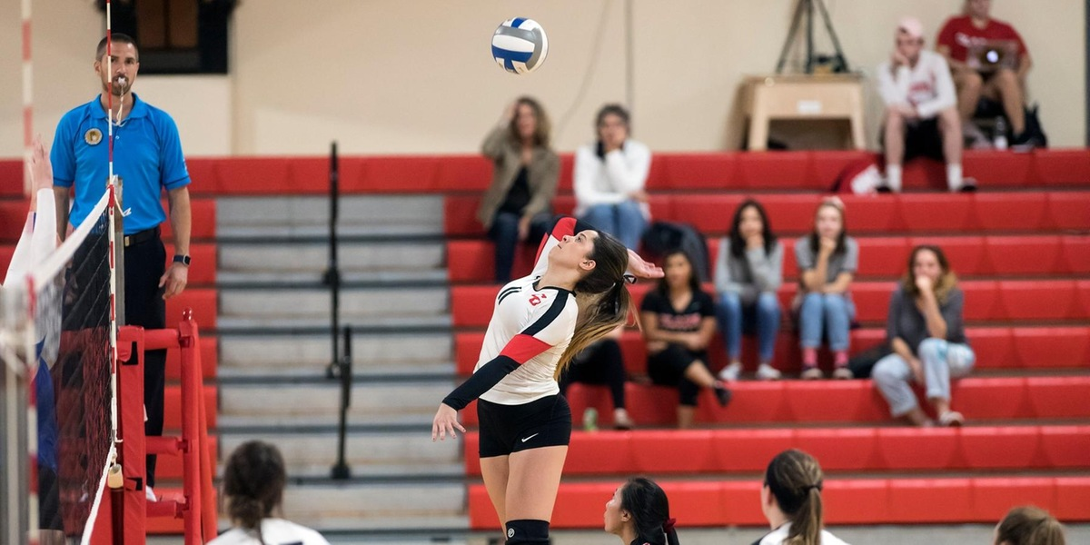 Cougars Sweep Trimatch with Anchormen and Bears