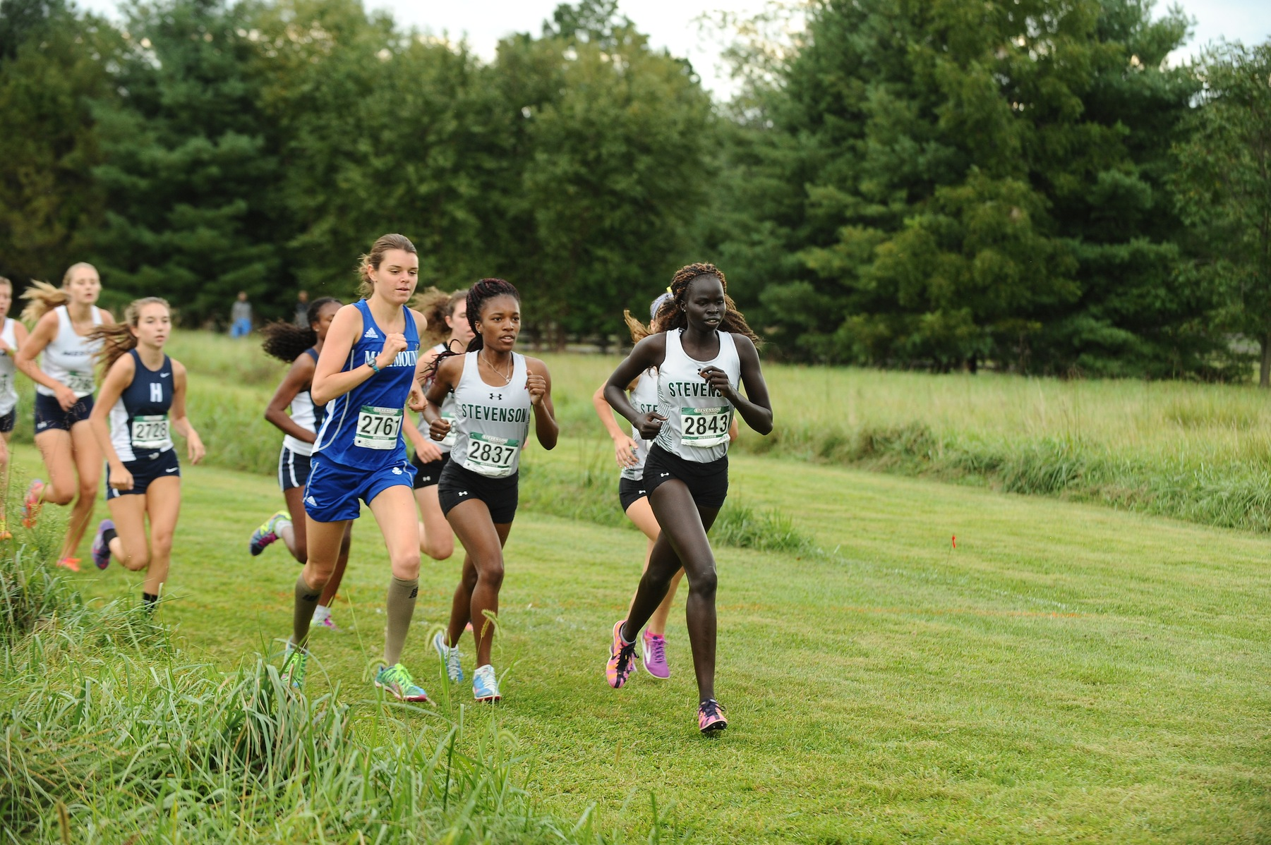 Sabo Leads Women's Cross Country to First Place at Mustang Stampede