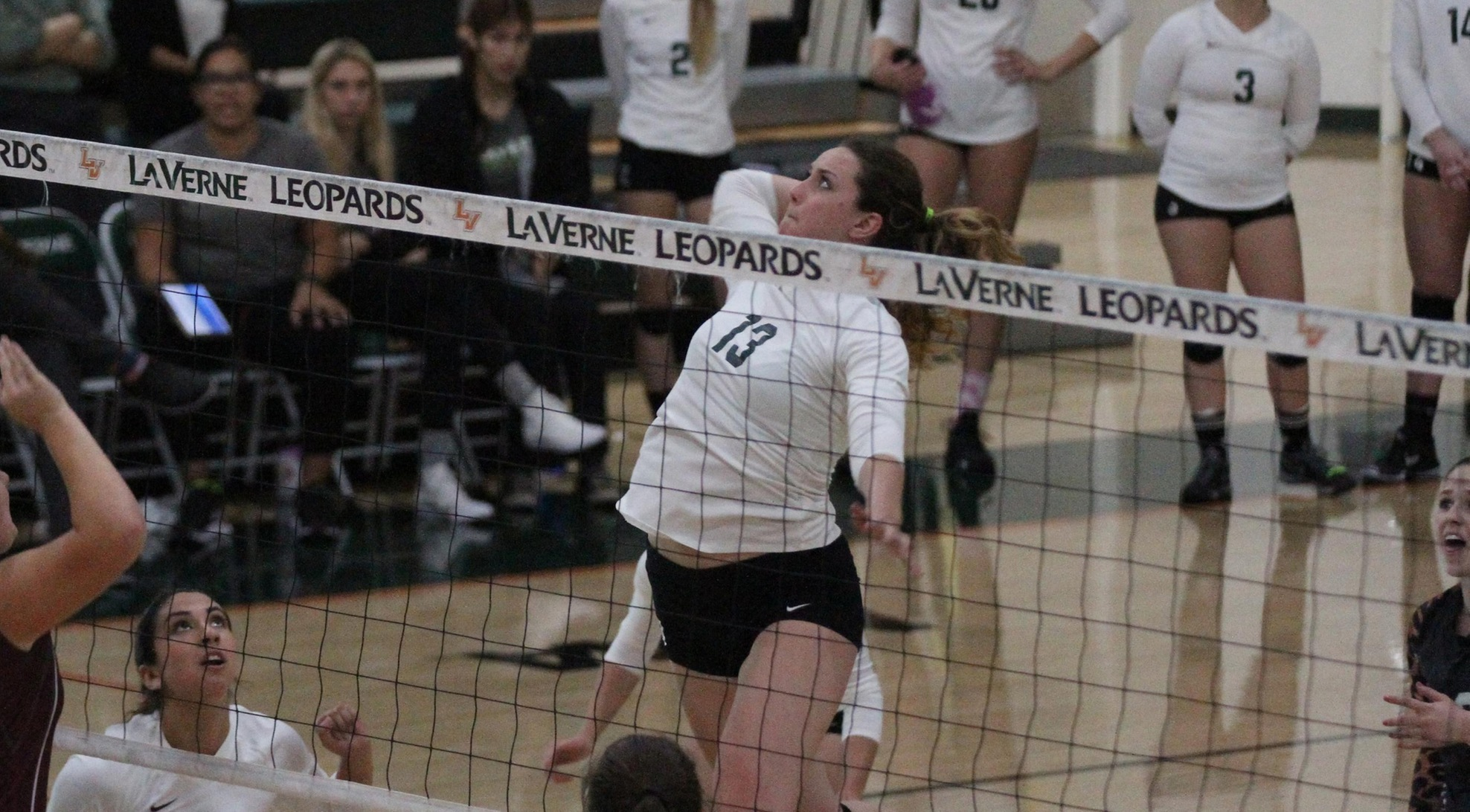 Four Leopards finish with double-digit kills at Chapaman