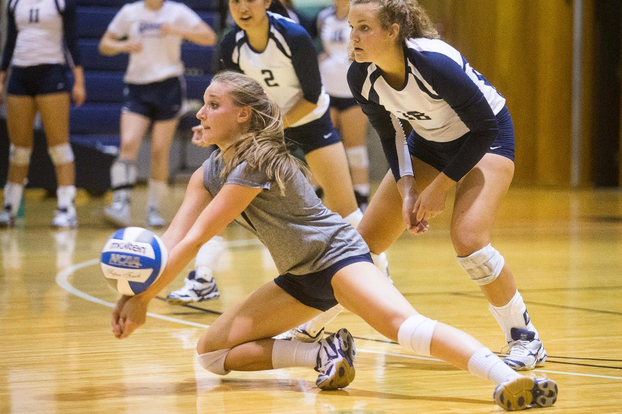 volleyball passion essay Volleyball, also known as mintonette was created in 1895 by a man named william g morgan blended elements of basketball, baseball, tennis, and handball to create.