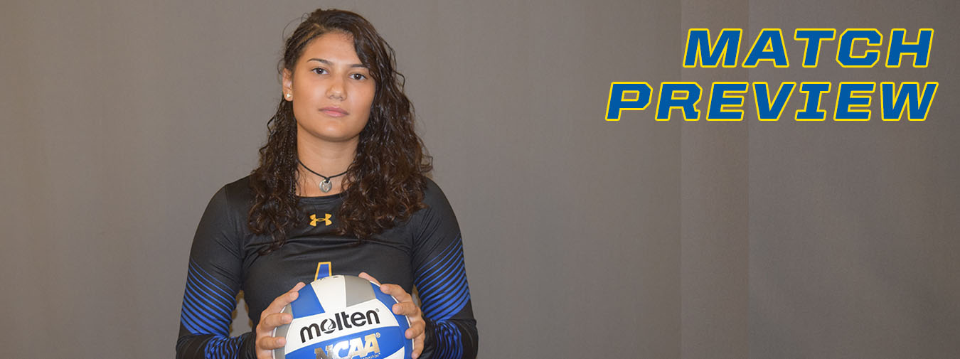 Goucher Women's Volleyball Starts Landmark Conference Play On Saturday At Elizabethtown