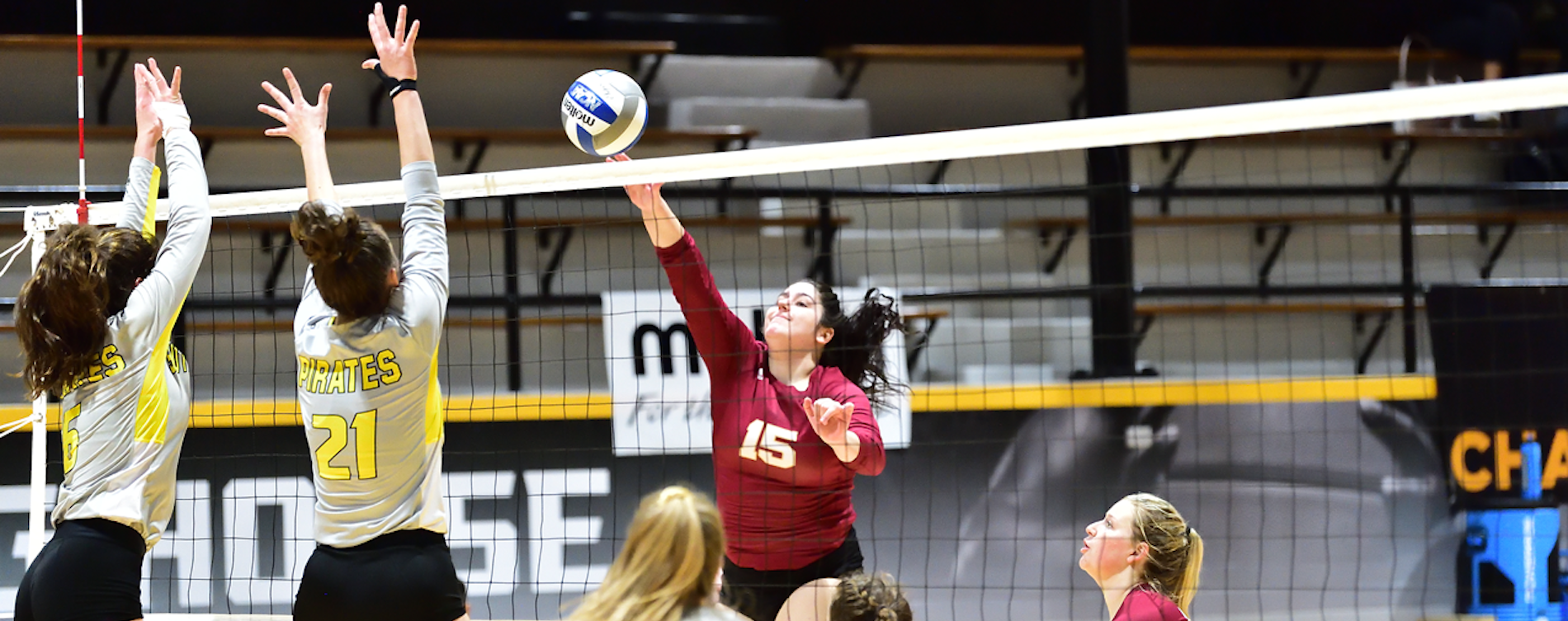 Austin College Volleyball Tops Southwestern