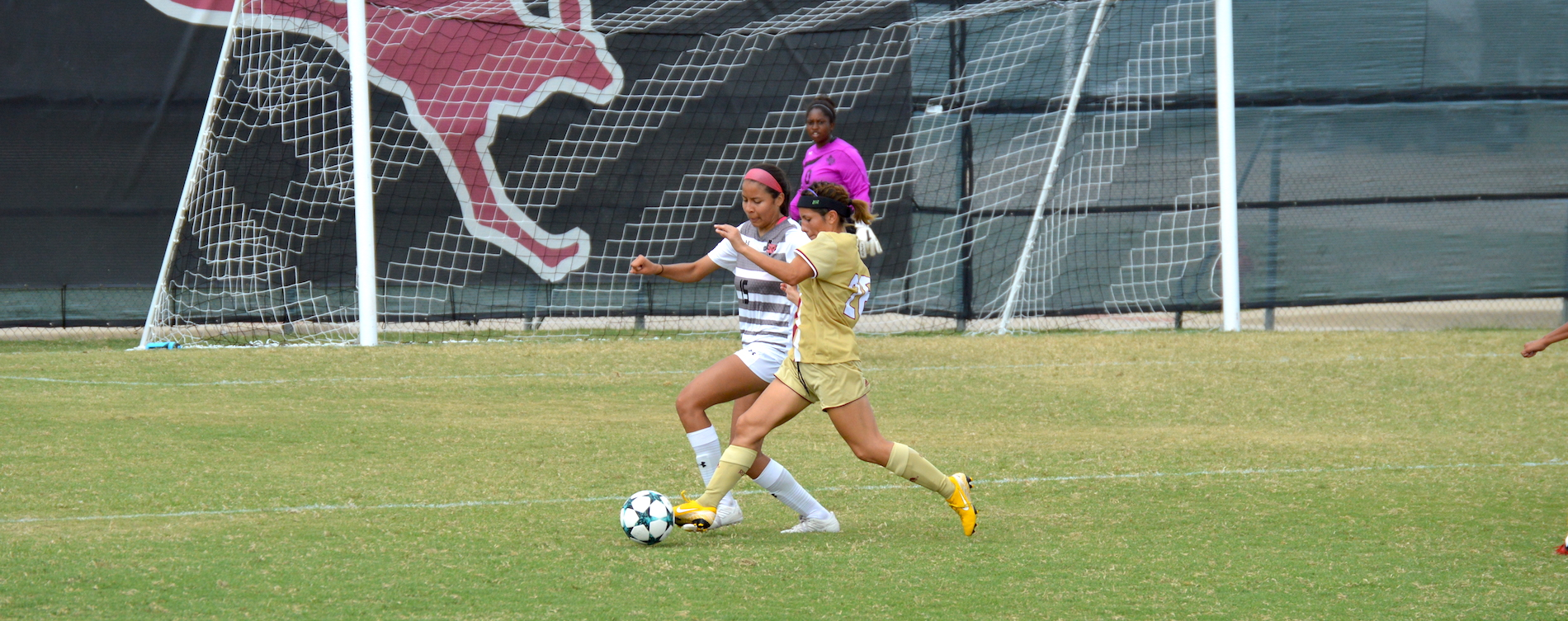 'Roo Women Fall Short Against Sul Ross