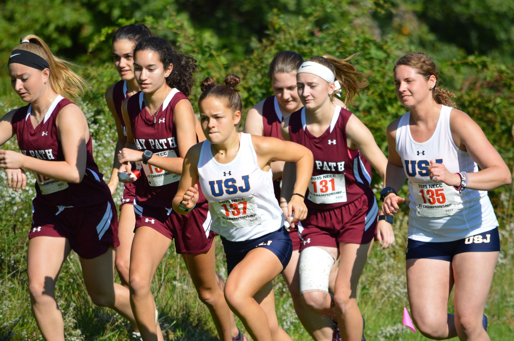Bay Path runs to Victory at the Blue Jay Invitational