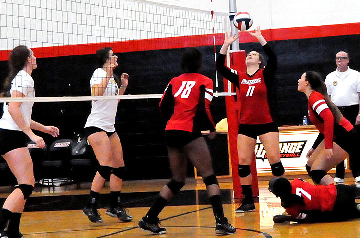 Volleyball: Panthers open USA South schedule with two matches