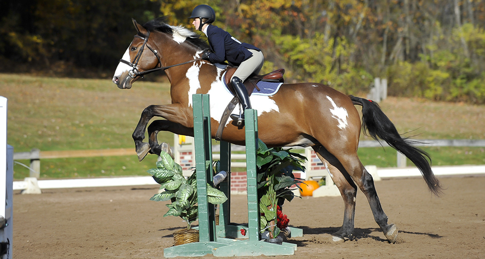 Riding Excels at Regional Championships