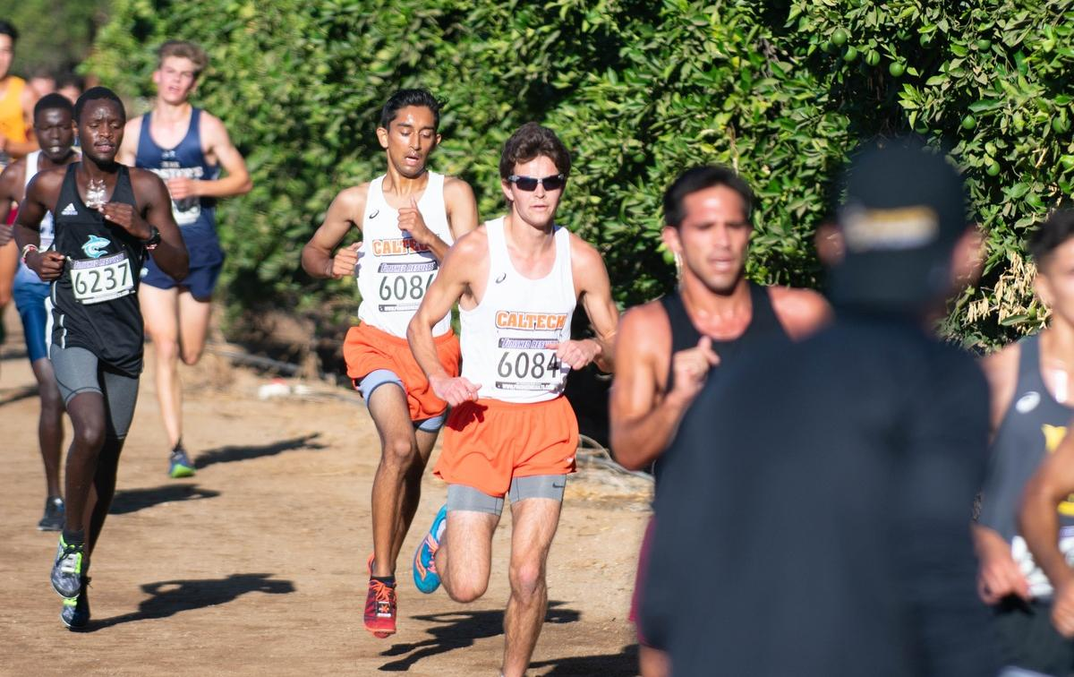 Men's Cross Country Second on All-Academic List