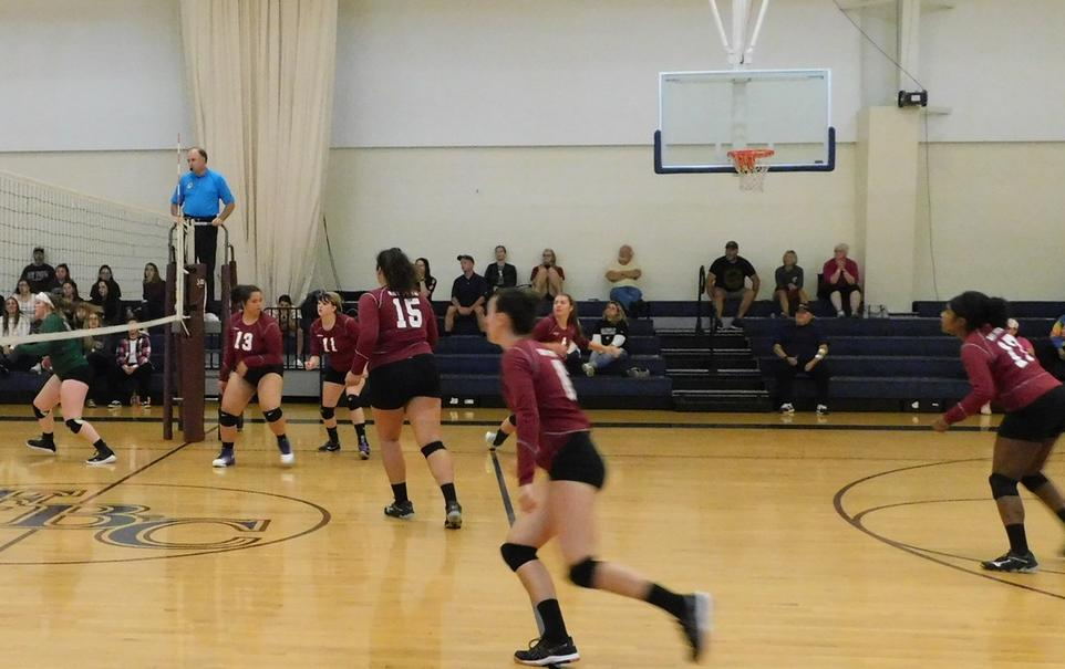 Bulldogs Top Wildcats 3-1 in NECC Women's Volleyball