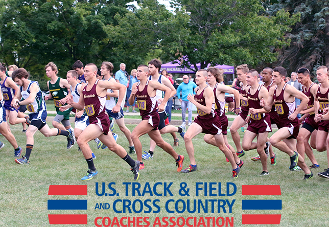 Men's Cross Country: Norwich Earns First USTFCCCA Team Honor, Hale Claims Second Straight Individual Award
