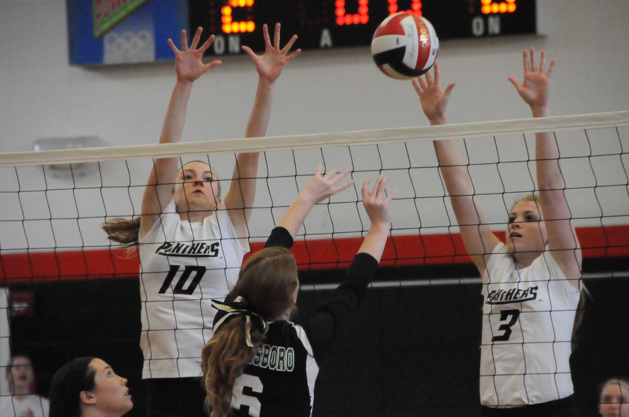 Volleyball: Panthers split USA South matches in Richter Gym