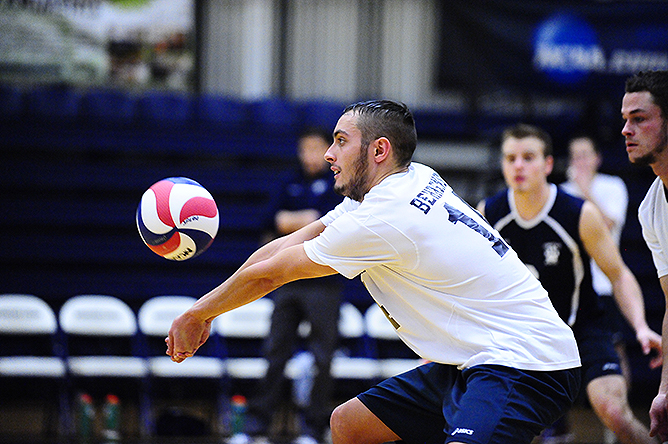 Men's Volleyball Downs Bard; Falls to No. 9 NYU