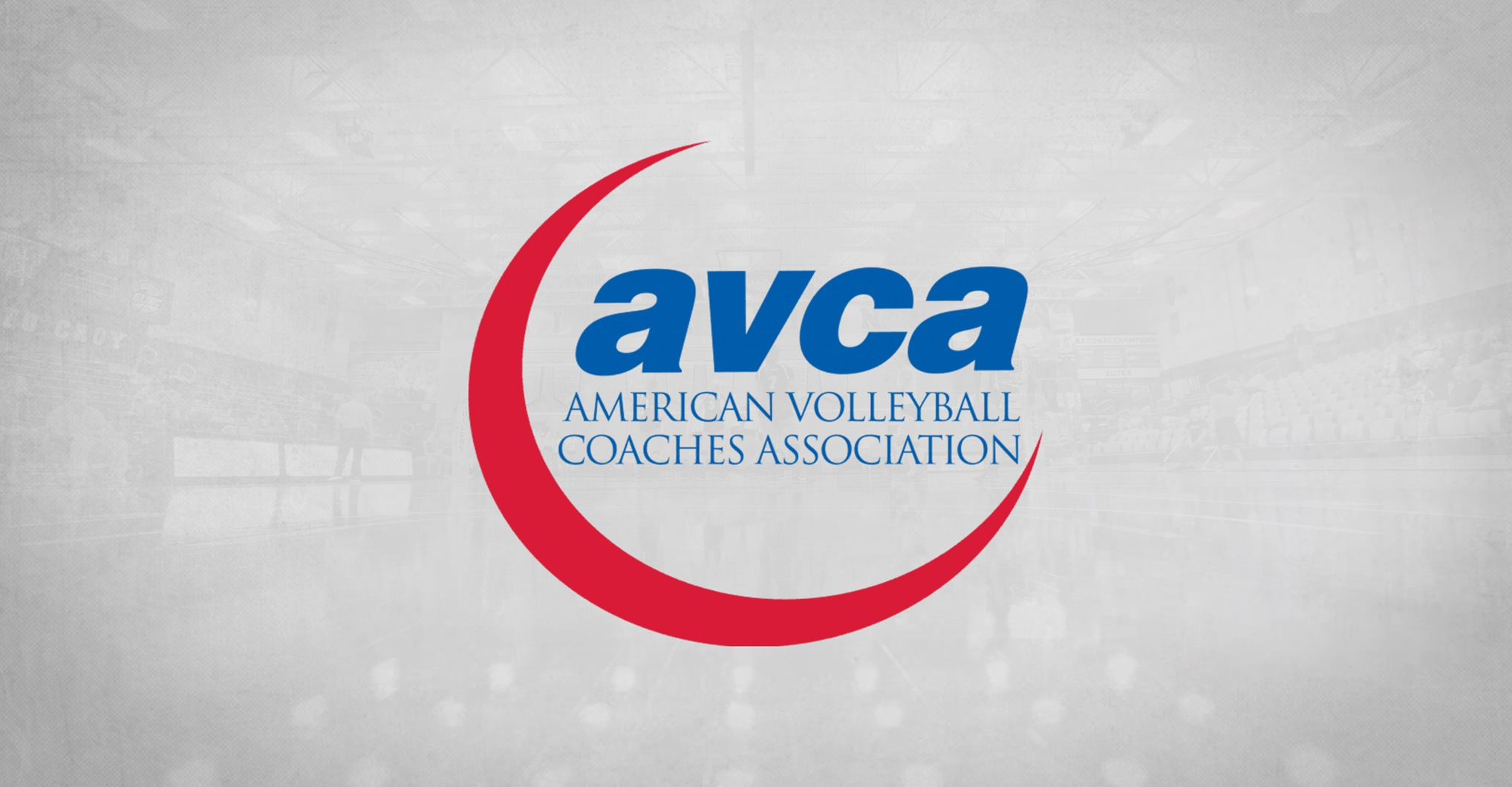 Volleyball Earns AVCA Academic Excellence Award for 15th Time