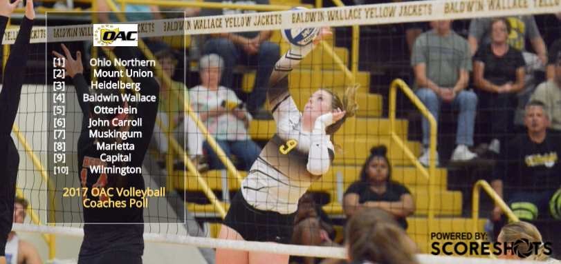 Volleyball Selected Fourth in OAC Preseason Poll
