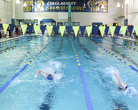 Season Preview: Gallaudet swimming and diving teams build a new foundation