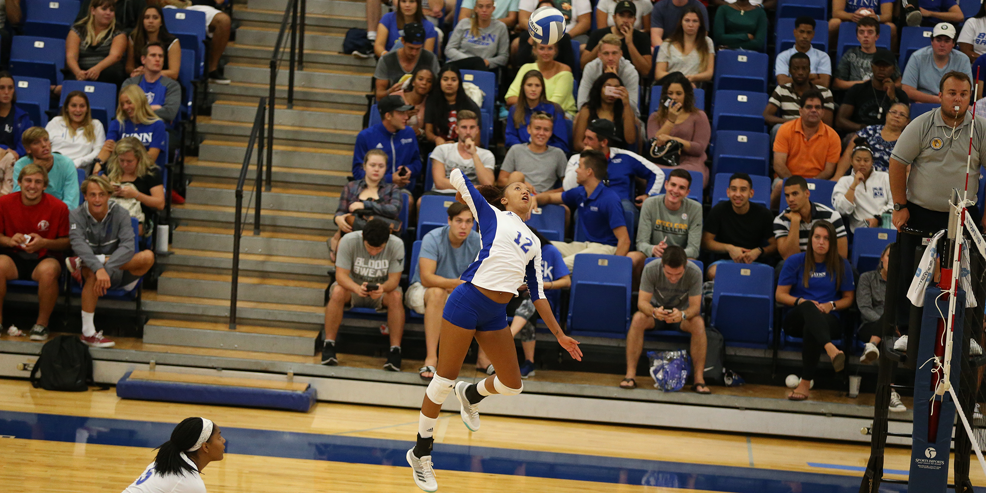 Panthers Halt Volleyball's Comeback Bid with Strong Final Frame