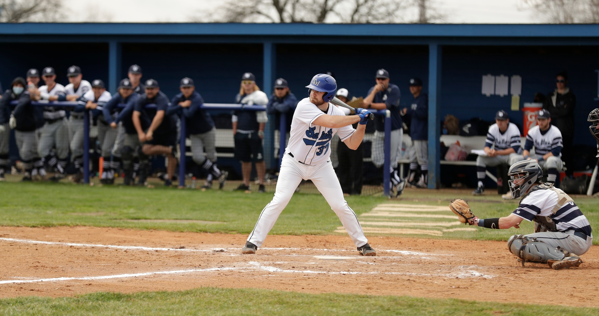Thomas More Falls to Wittenberg on Tuesday