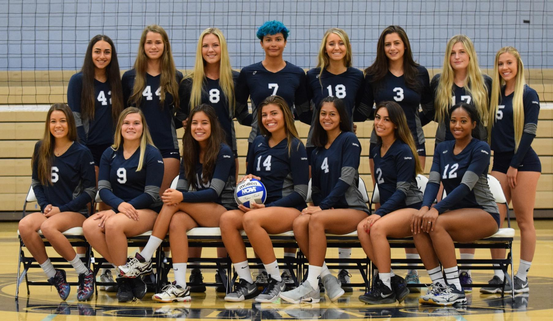 Women's volleyball team No. 2 in state in first poll of 2017