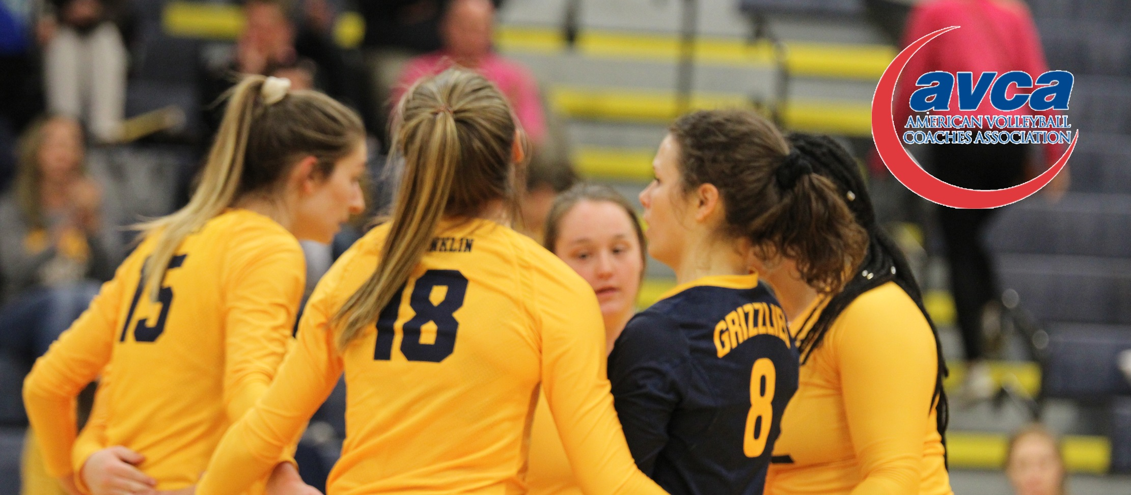 Grizzlies Collect AVCA Team Academic Award for 2018-19