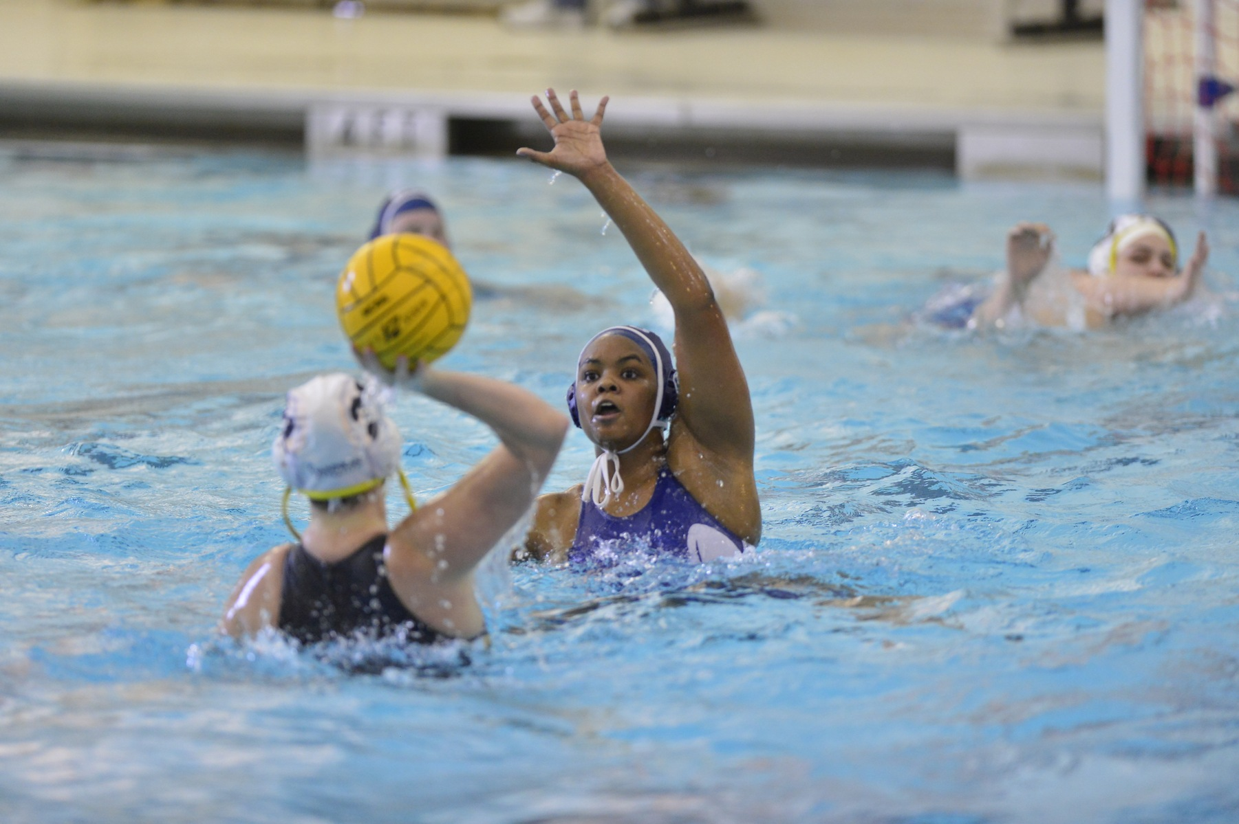 Water Polo Falls to Occidental and Villanova