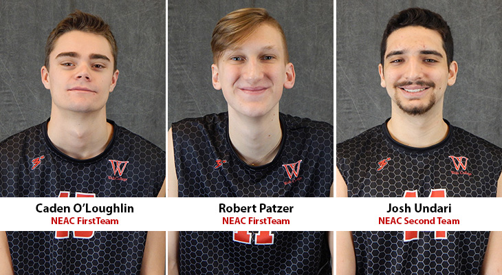 All-Conference Honors For Three Wells Men's Volleyball Players
