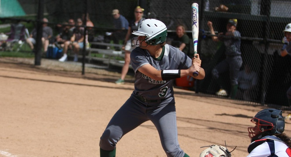 Vikings Drop Twinbill at Wright State to Conclude Season