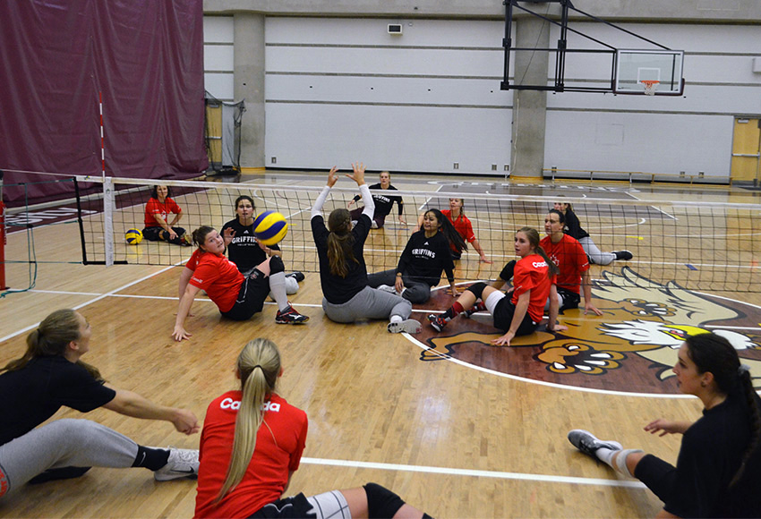 Members of the MacEwan Griffins women's volleyball team (black shirts) team up with players from Team Canada's women's sitting volleyball team to try the Paralympic sport during practice on Friday.