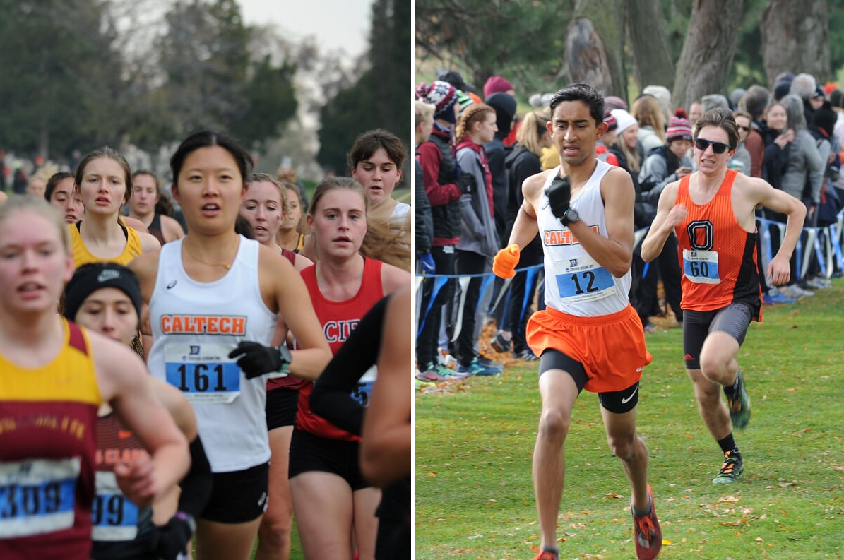 Cross Country Ends 2018 on All-Time High Note