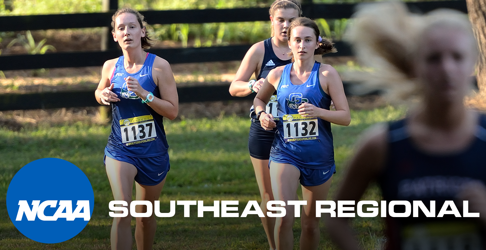 Women's Cross Country Regional Preview