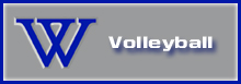 Select for more volleyball information