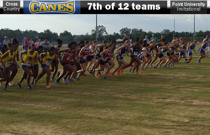 Lady 'Canes Finish 7th Of 12 At Point Invite