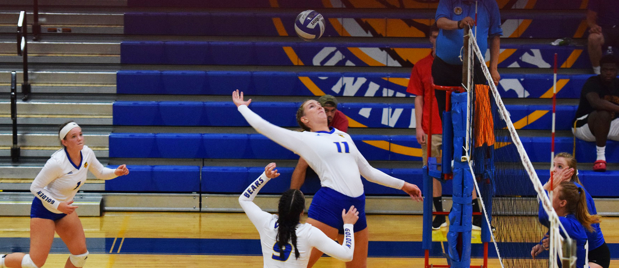 Cassie Holmes hit .333 with 14 kills and 7 blocks (4 solo) on Friday night in Western New England's 3-2 win over Mount Holyoke. (Photo by Rachael Margossian)