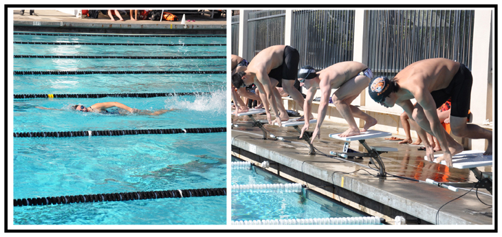 Beaver Swimmers, Divers Begin Season