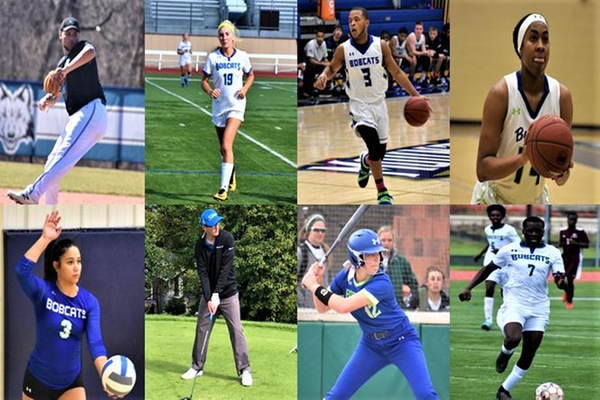 --- Bryant & Stratton College Bobcats athletics 2018-19 season recap ---