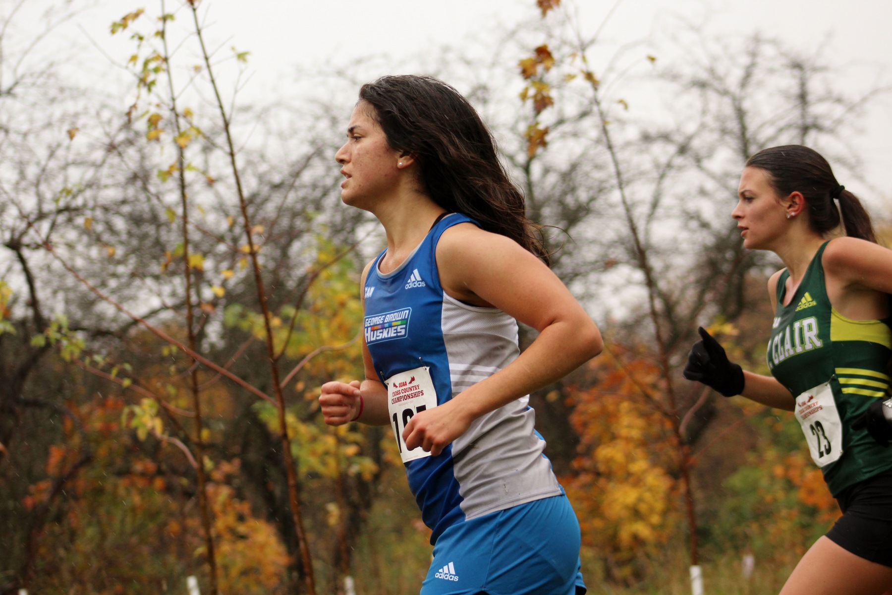 HUSKIES CROSS COUNTRY OFF TO NATIONALS WITH BRONZE FINISH AT OCAA CHAMPIONSHIPS