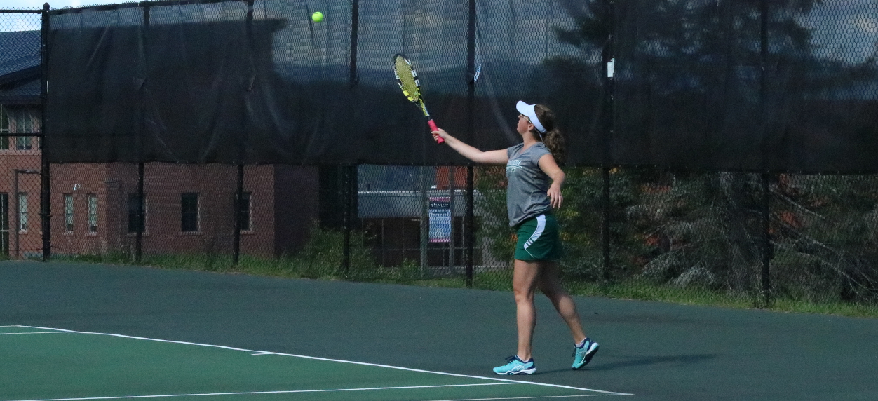 Hornets swept by Badgers