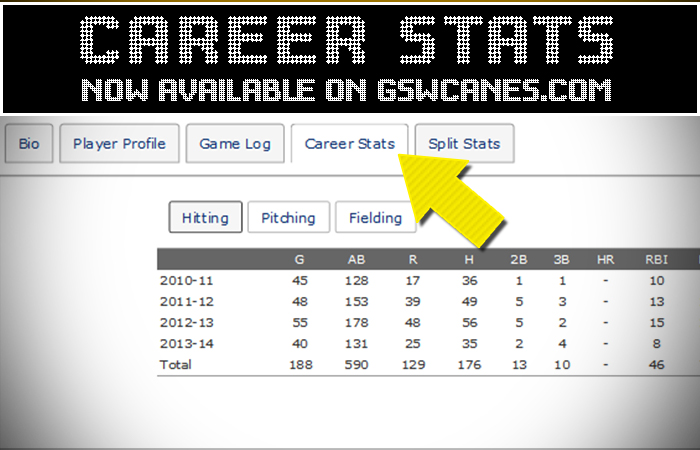 Career Stats Feature Added For Several Sports