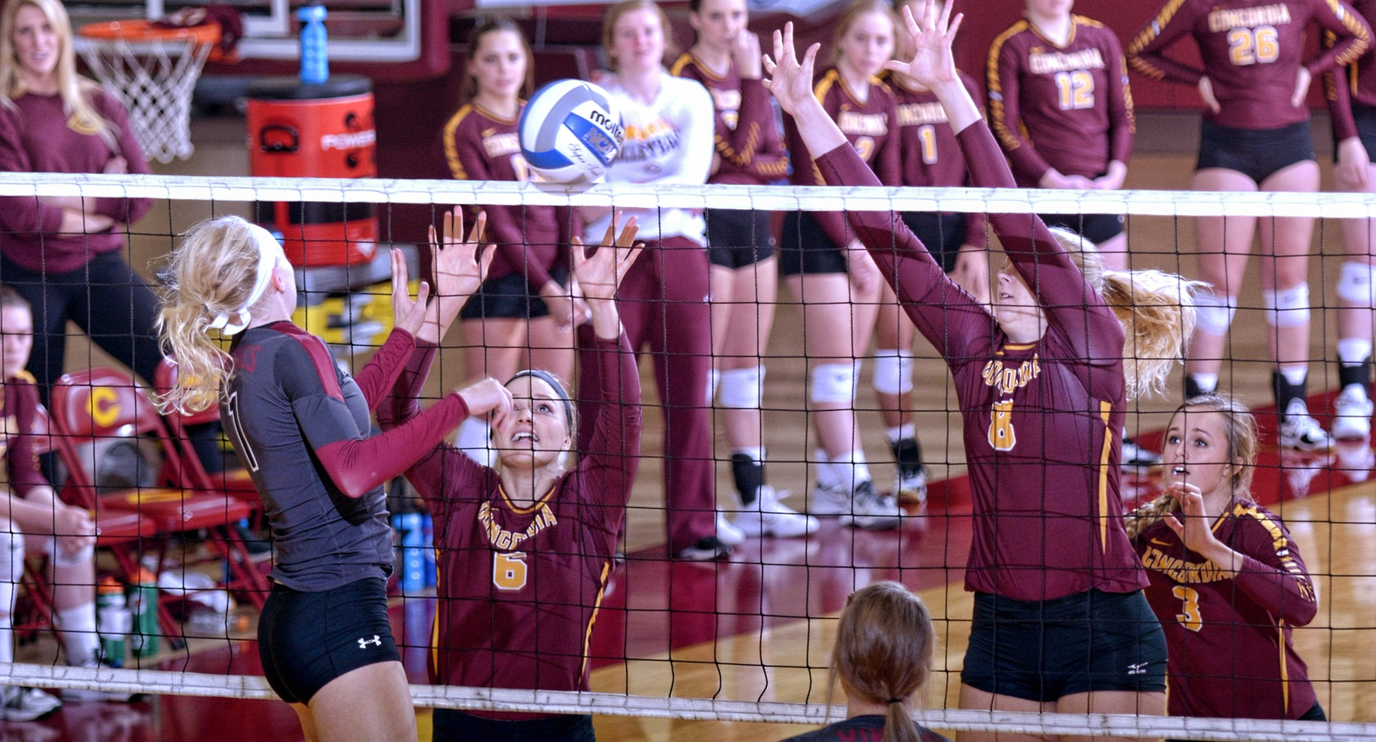 Emily Friedrich (L) and Brianna Carney led the Cobber defense as they held Valley City St. to a -.025 attack percentage in CC's sweep.