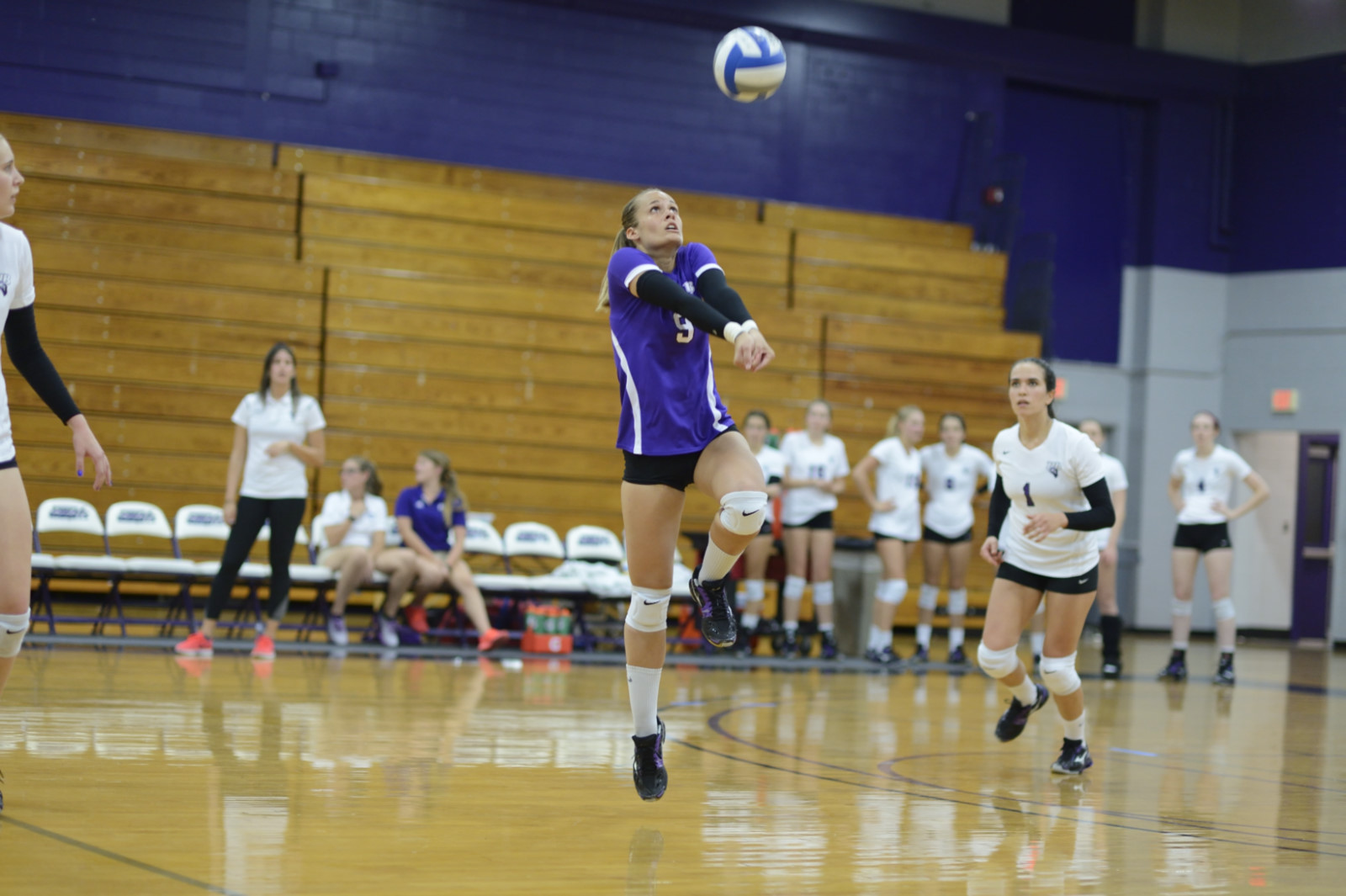 Volleyball Finishes With Weekend Split In Western New York After Loss At Daemen