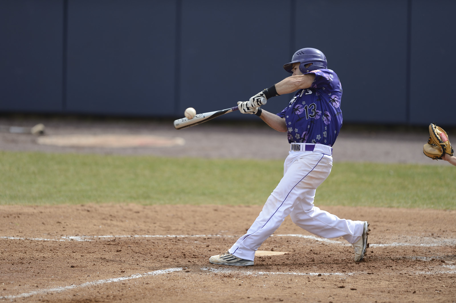 Baseball Back In The Win Column With Florida Doubleheader Sweep Over Bentley