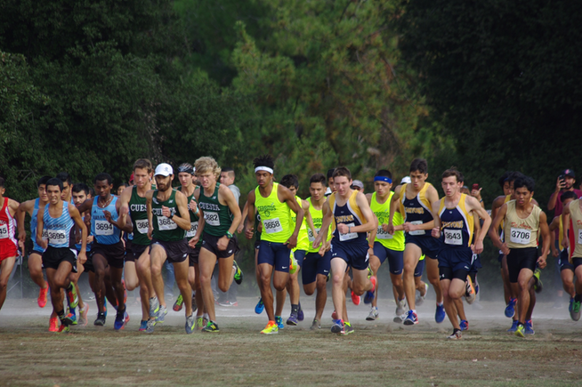 Falcon men's cross country places 13th at state championships