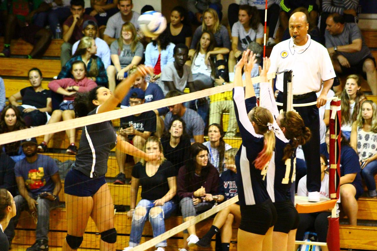 Tigers Take Volleyball in Three