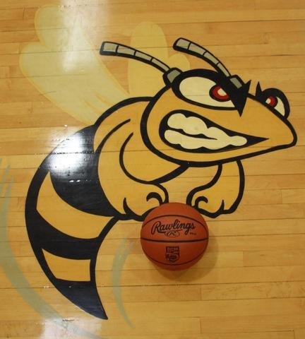 Picture of Hornet with basketball