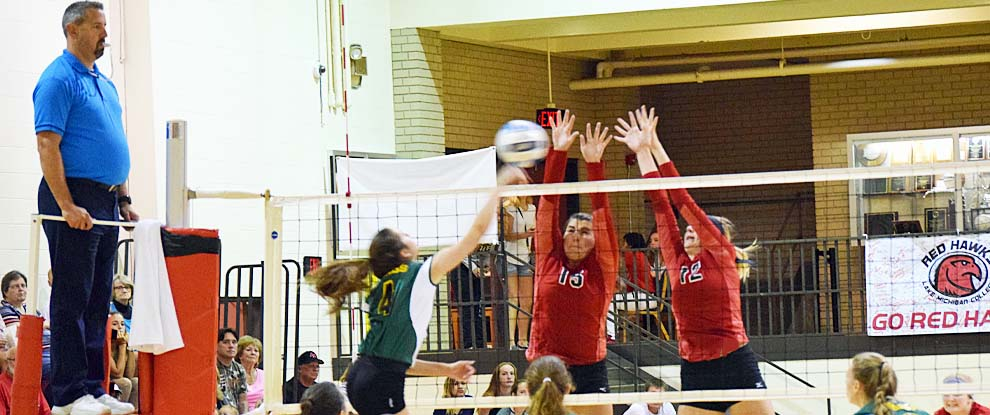 Photo for Lady Red Hawks Battled Against Glen Oaks